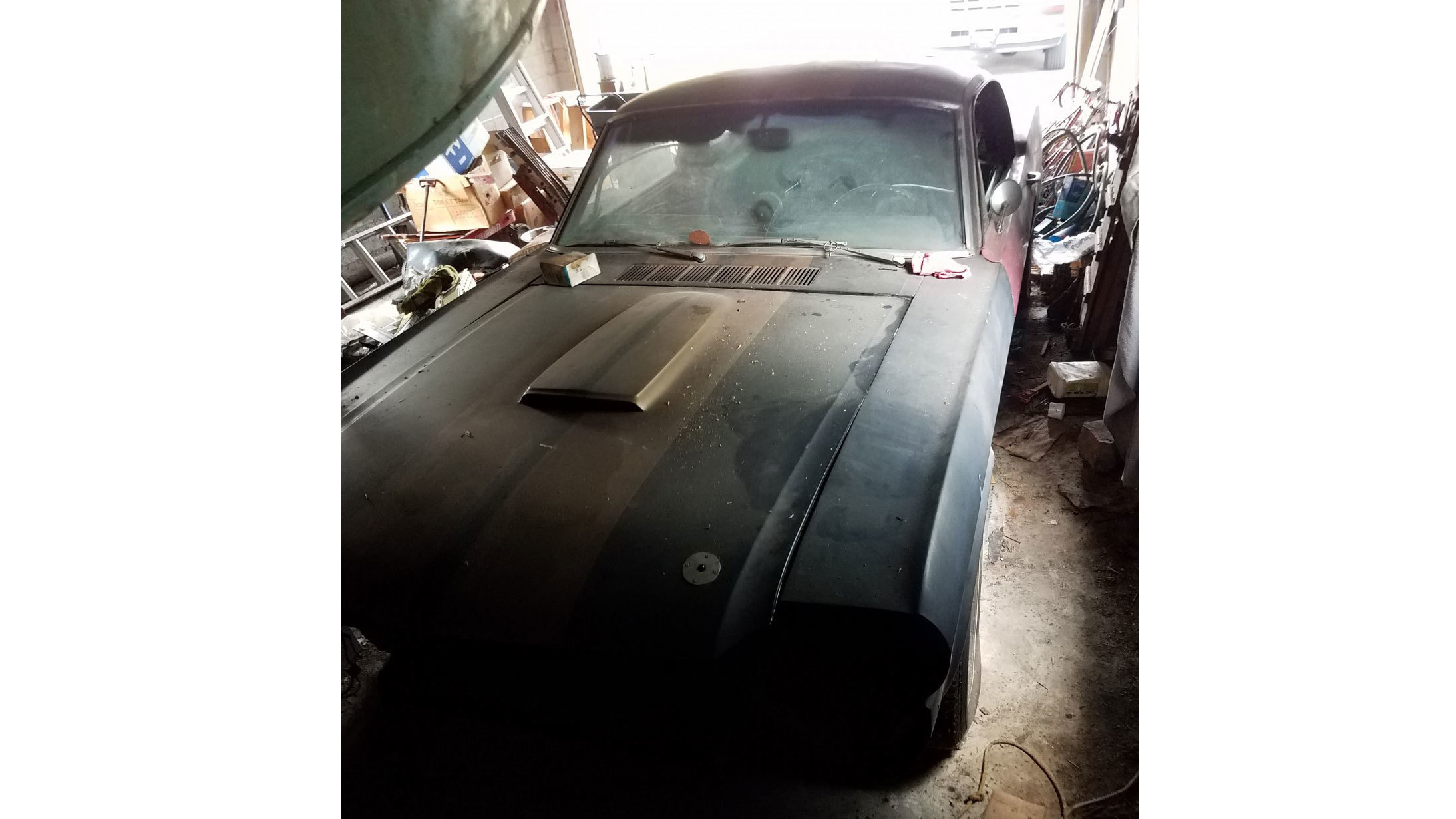 1966-ford-mustang-shelby-gt350h-barn-find-1 (1)