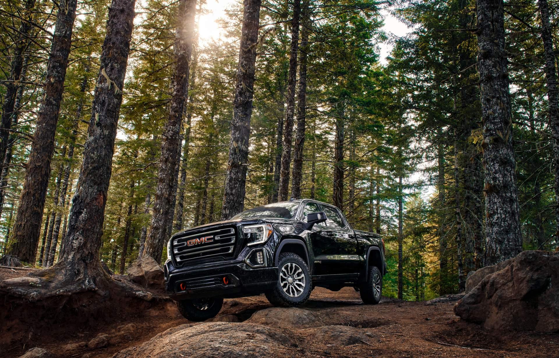 GMC Sierra AT4 Off-Road Performance Package 2019 (22)