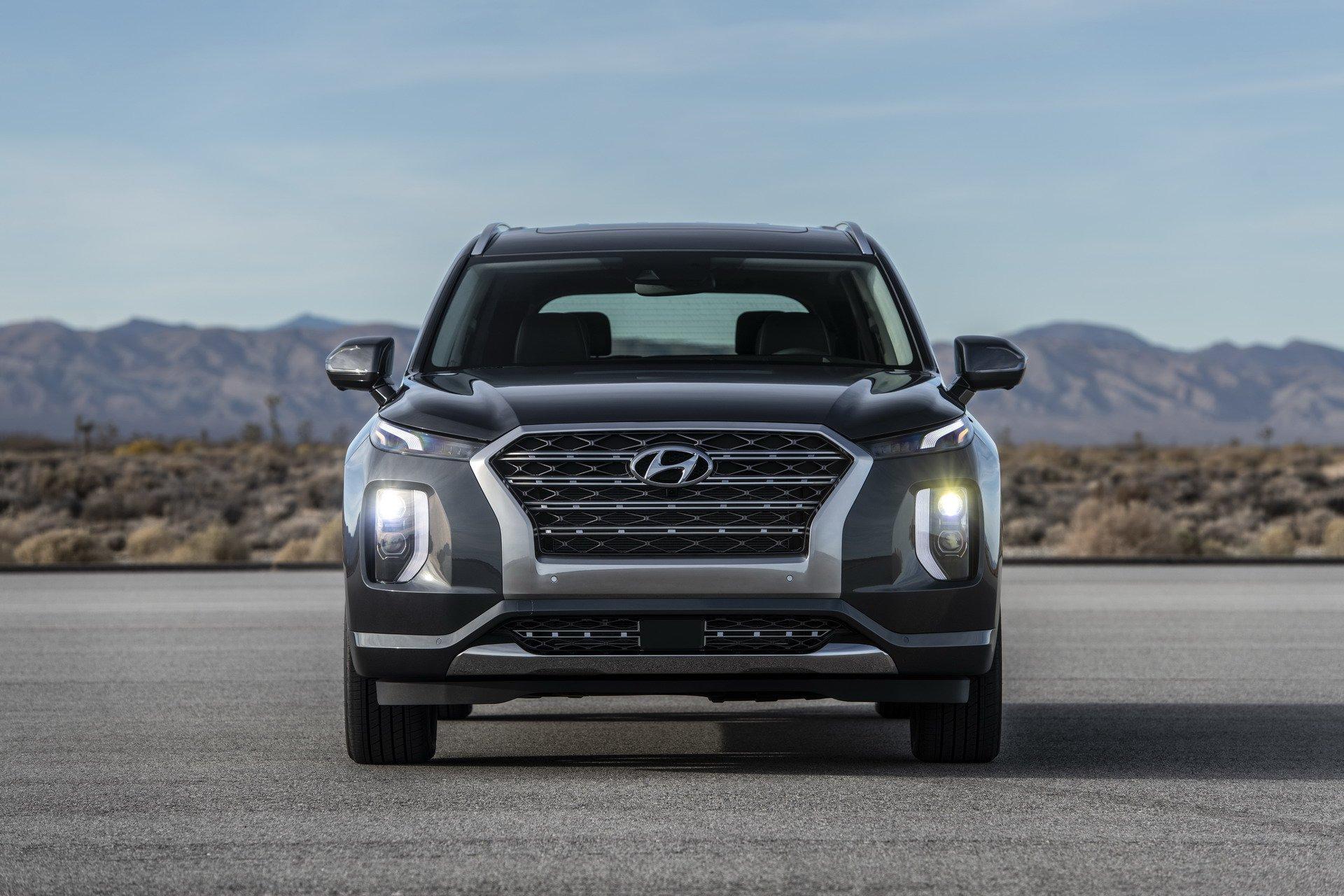 Hyundai-Palisade 2019 (3)