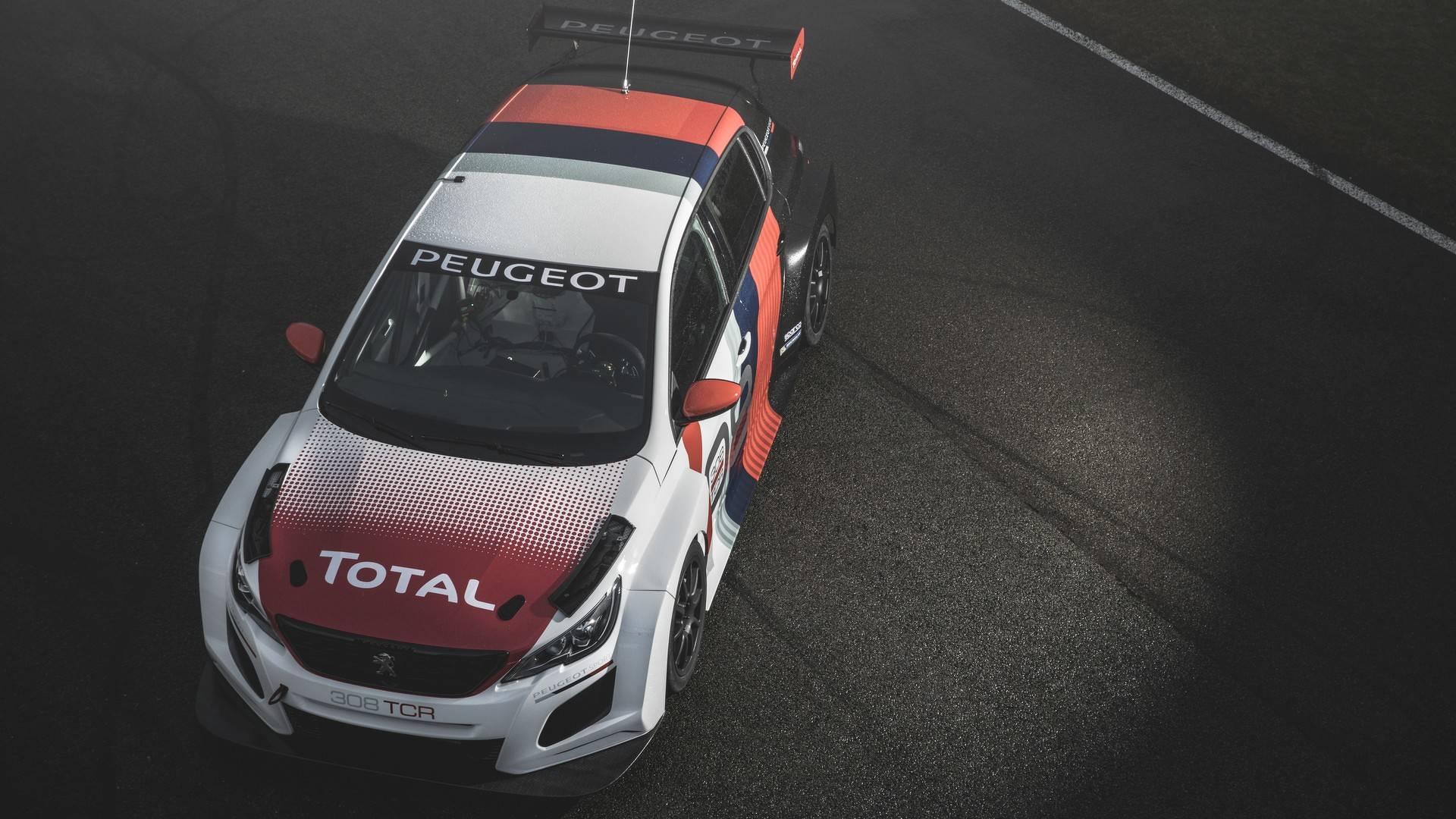 Peugeot 308 TCR 2018 (11)