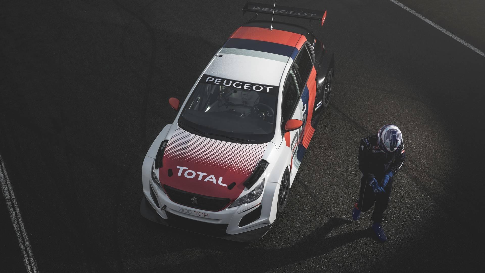 Peugeot 308 TCR 2018 (12)