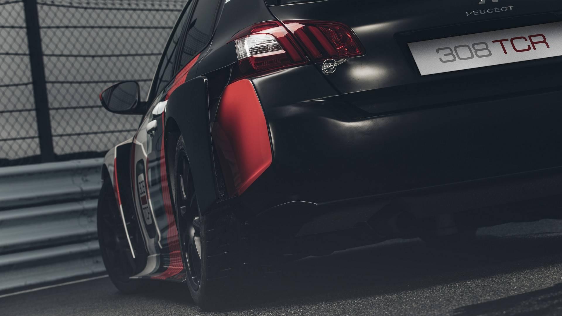 Peugeot 308 TCR 2018 (19)