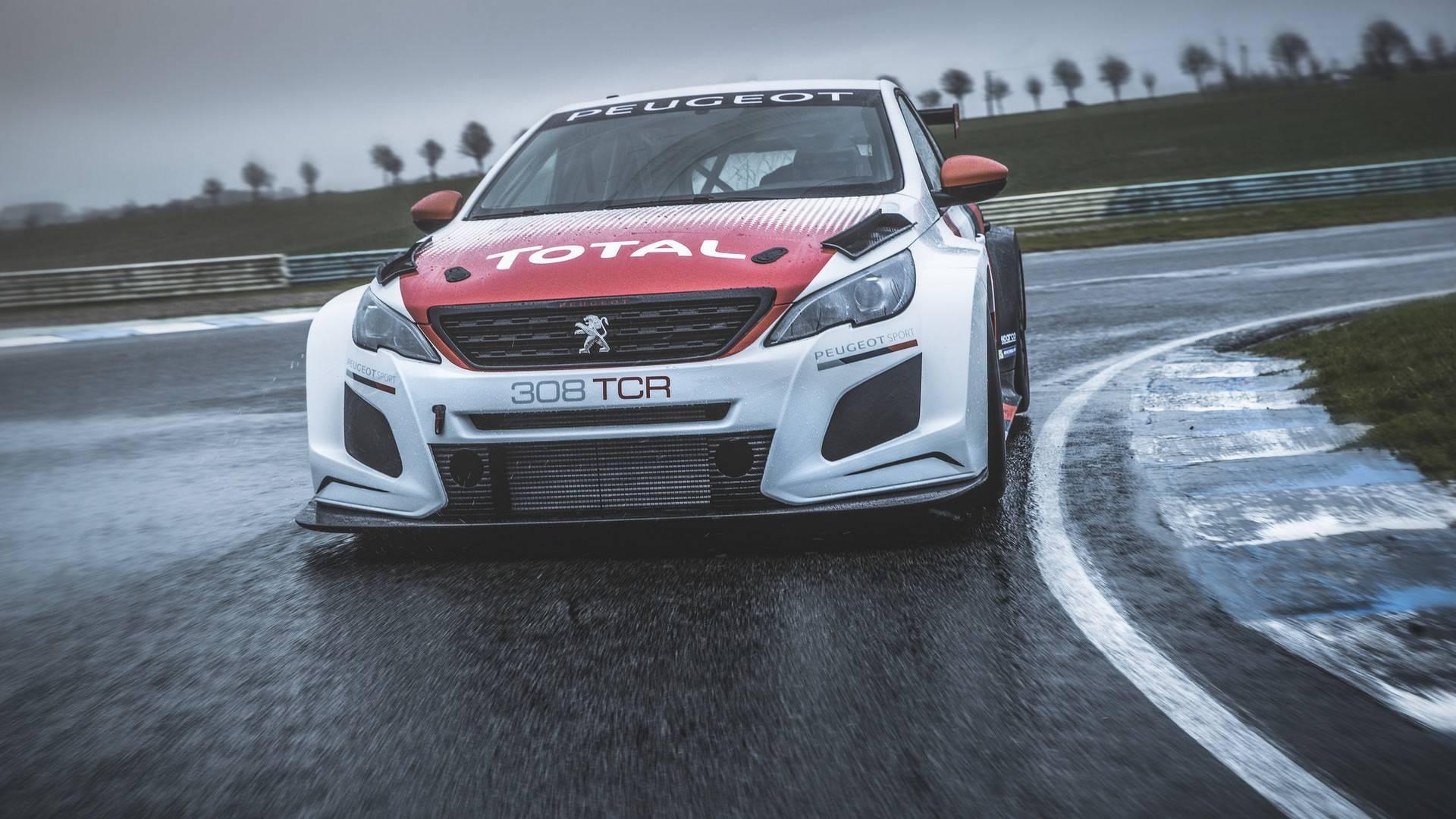 Peugeot 308 TCR 2018 (4)