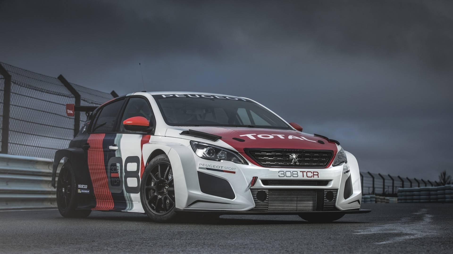 Peugeot 308 TCR 2018 (9)