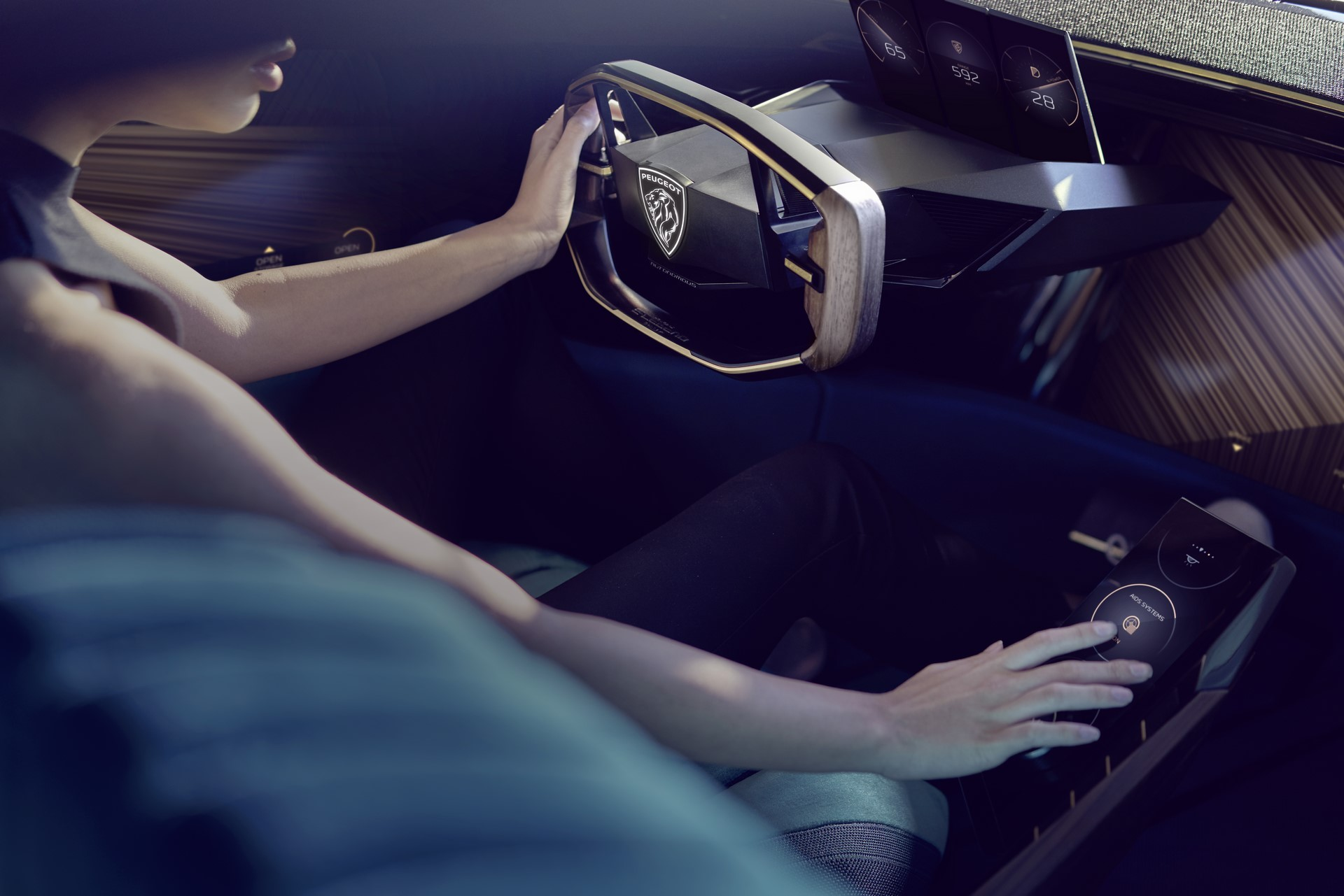 Peugeot E-Legend Concept (69)