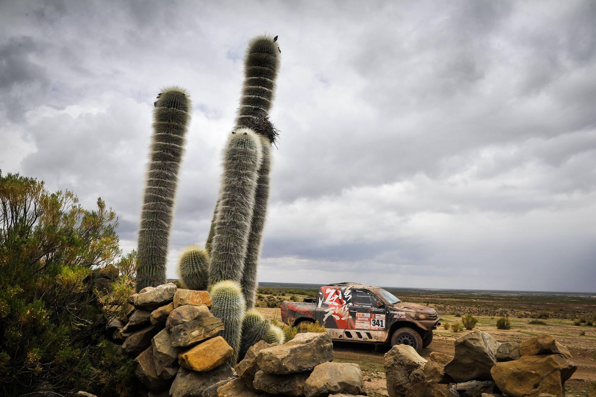 Rally Dakar 2018 Day 8 (12)