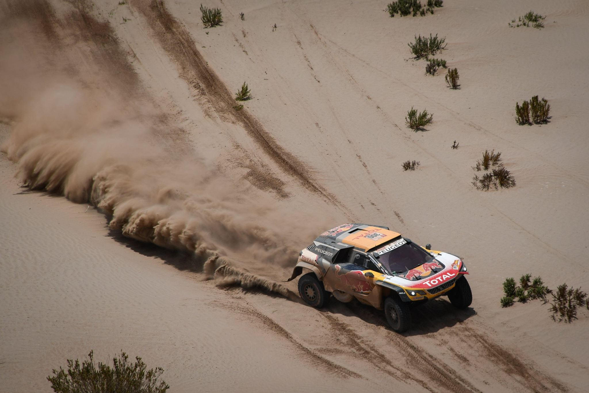 Rally Dakar 2018 Day 8 (21)