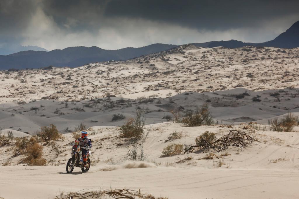 Rally Dakar 2018 Stage 11 (39)