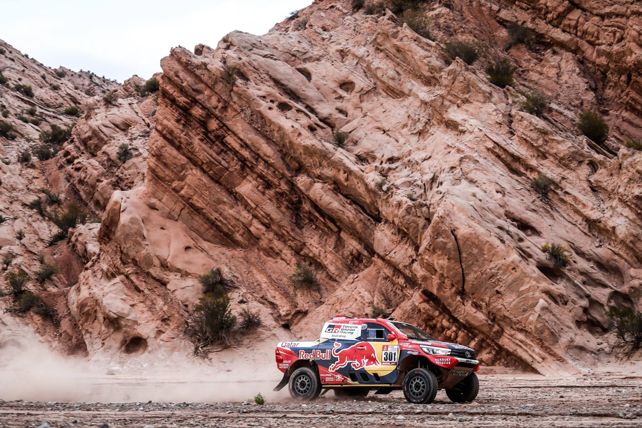 Rally Dakar 2018 Stage 12 (21)