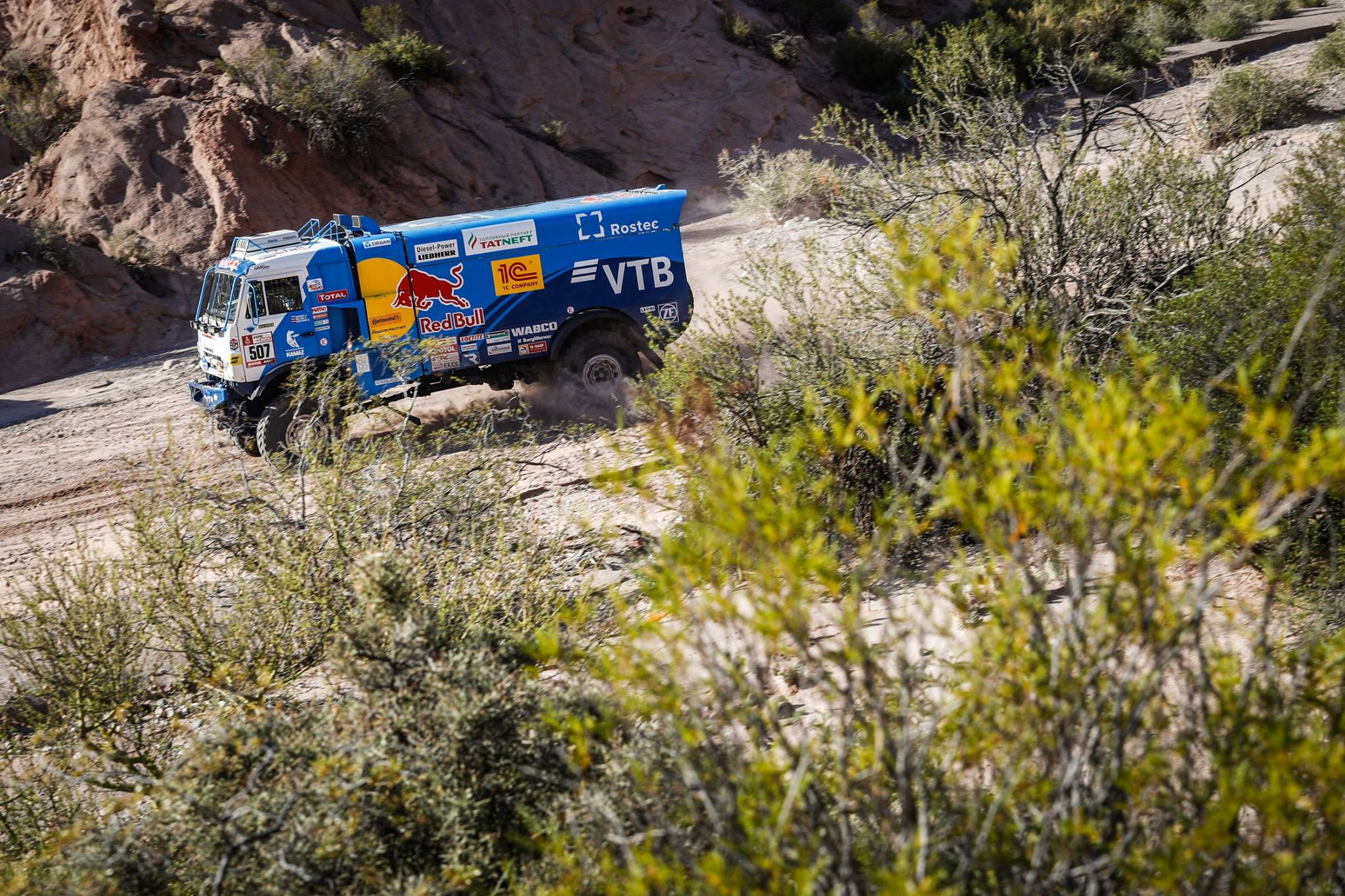 Rally Dakar 2018 Stage 12 (26)