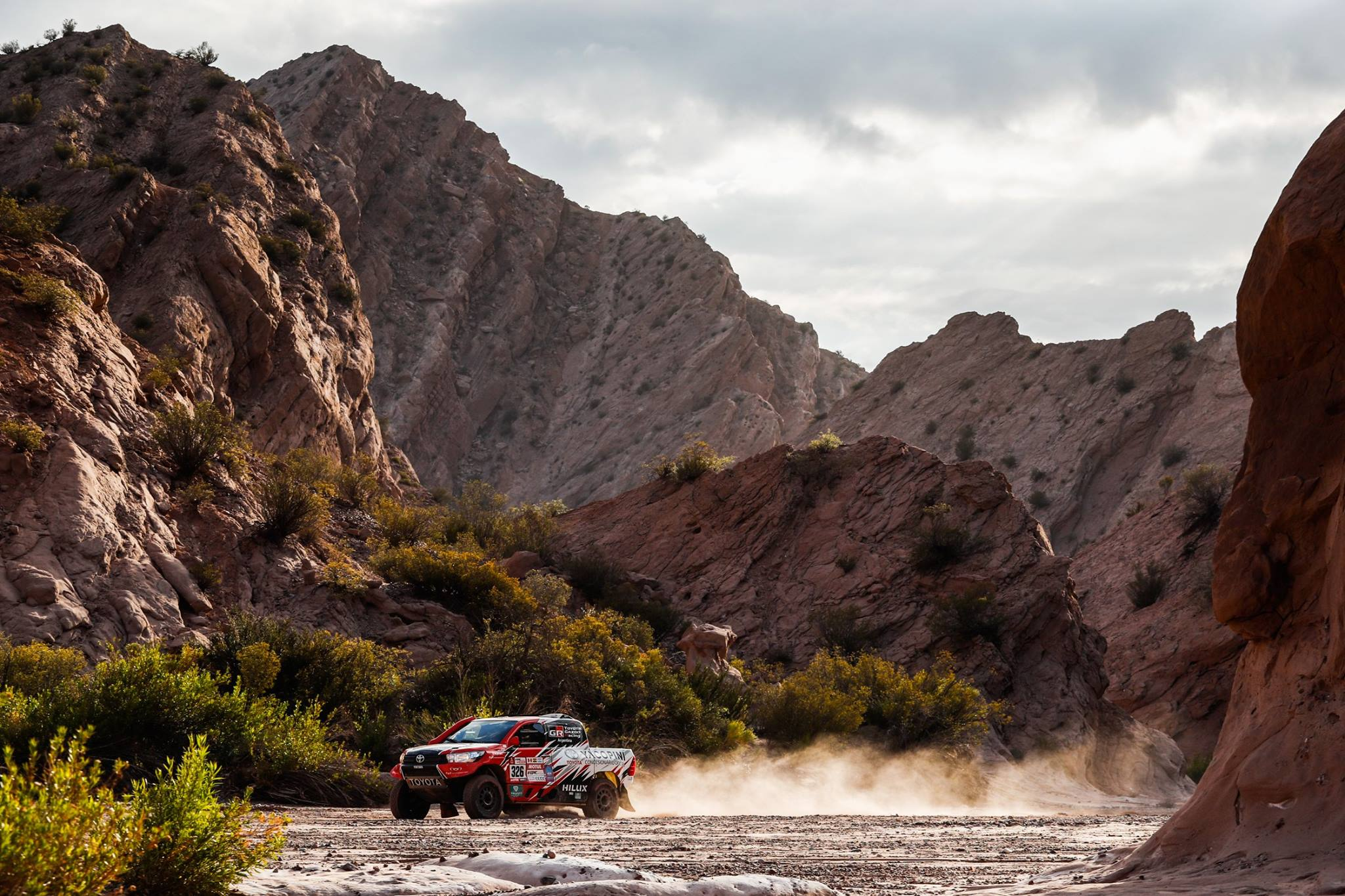 Rally Dakar 2018 Stage 12 (34)