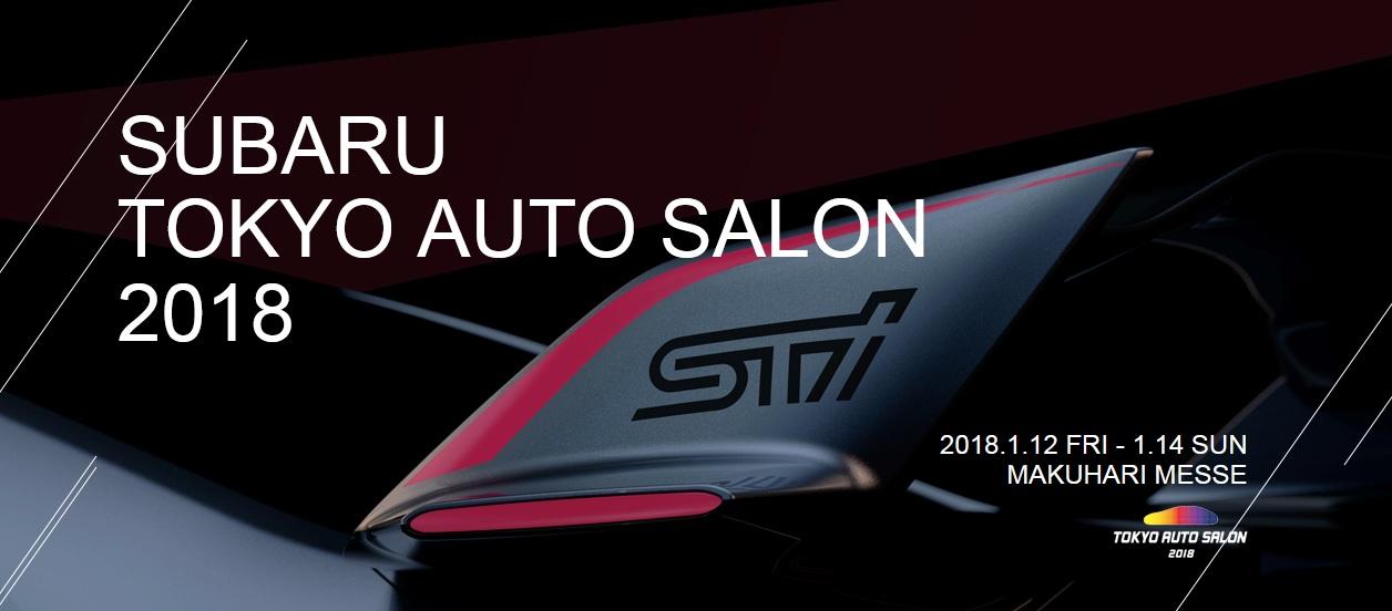 Subaru Viziv Performance STI Concept (11)