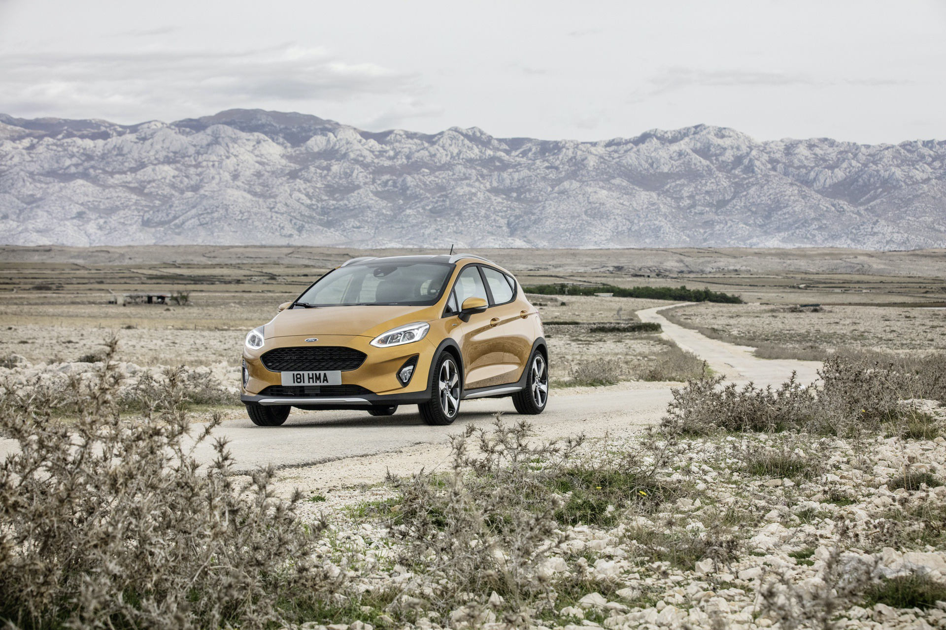 Test_Drive_Ford_Fiesta_Active_0010