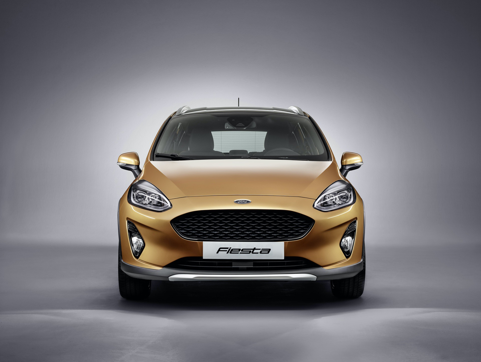 Test_Drive_Ford_Fiesta_Active_0014
