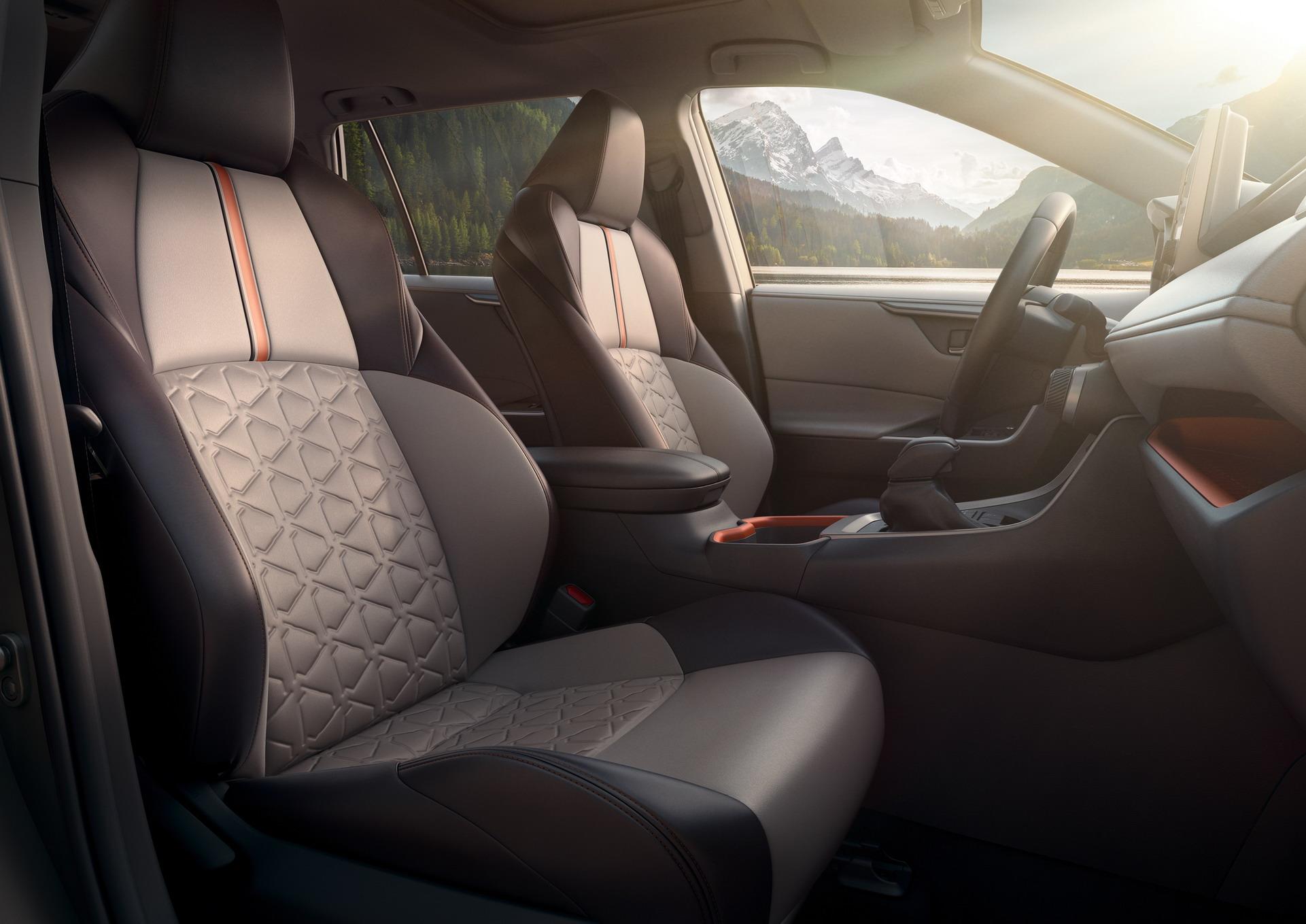 Toyota RAV4 2018 (19)