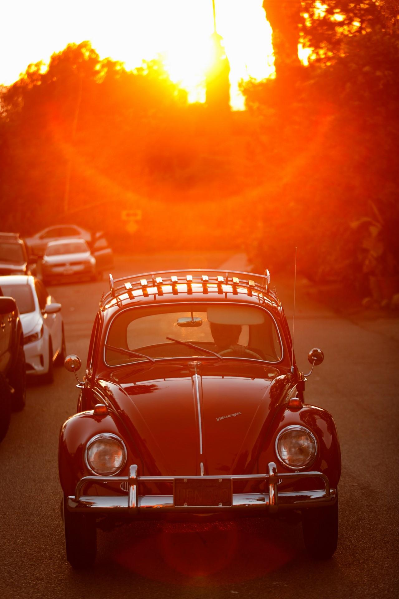 Kathleen_Brooks_1967_Annie_Beetle--9202