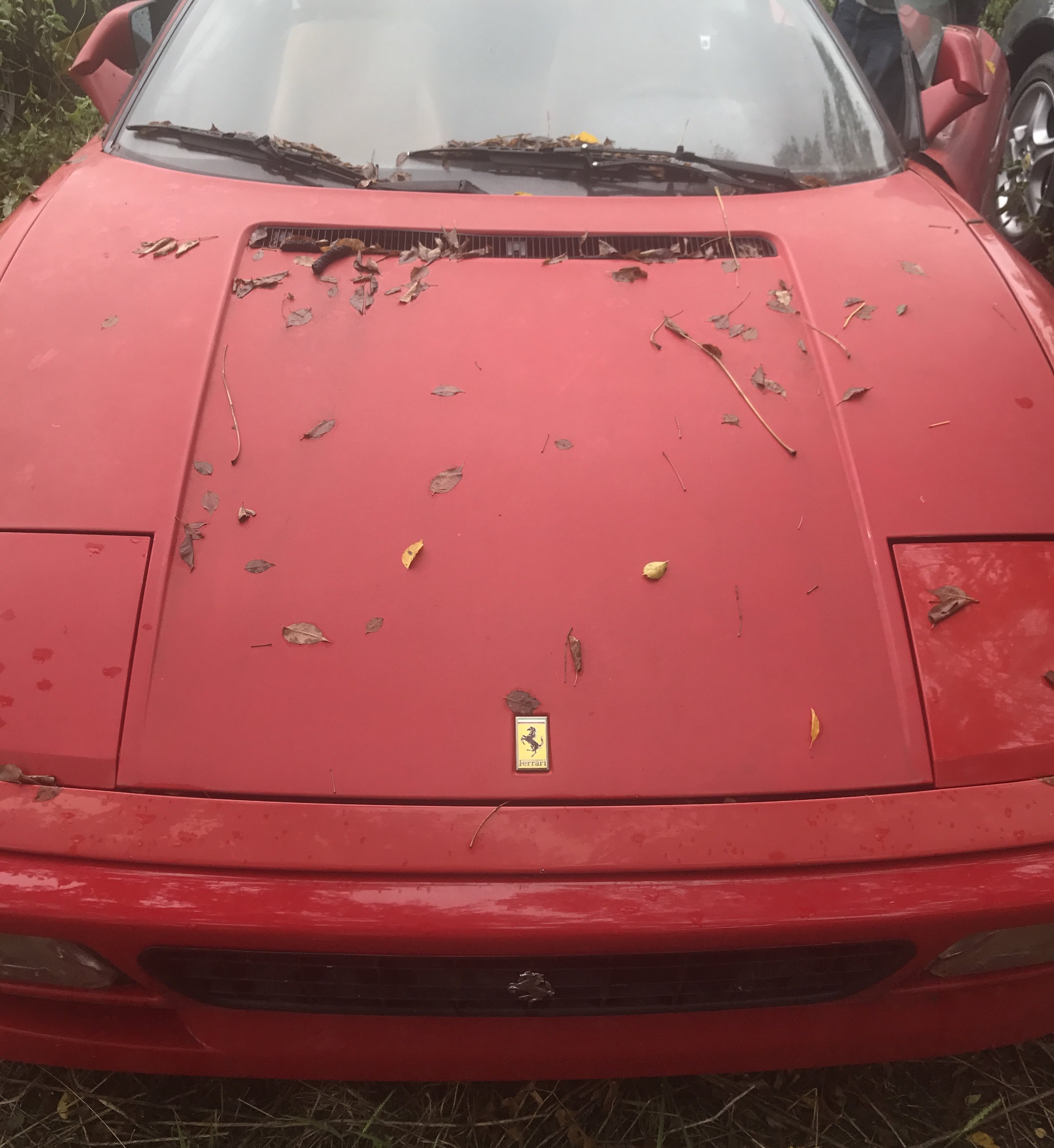 Abandoned-Ferrari-12