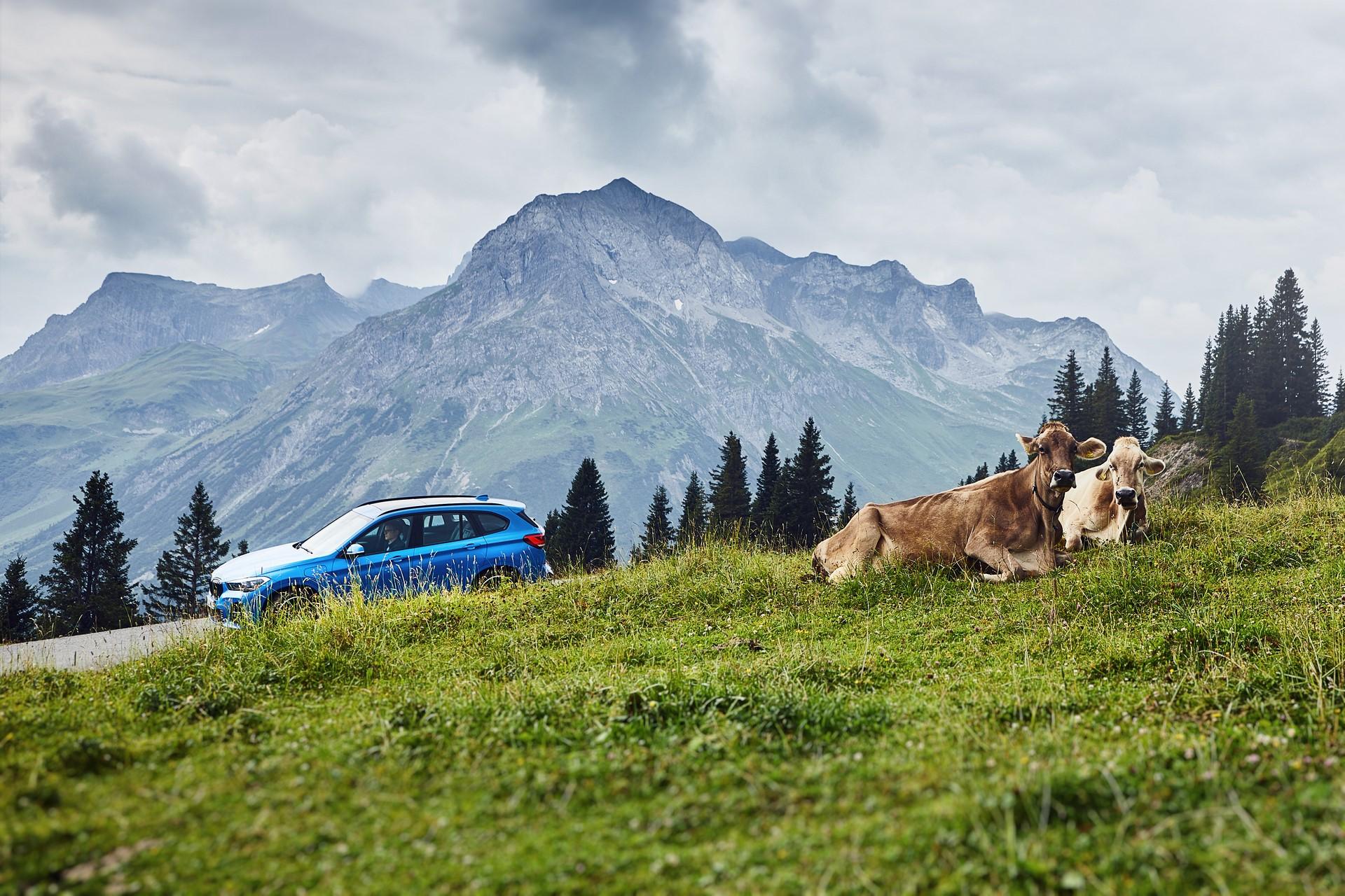 BMW-X1-xDrive25e-2019-8