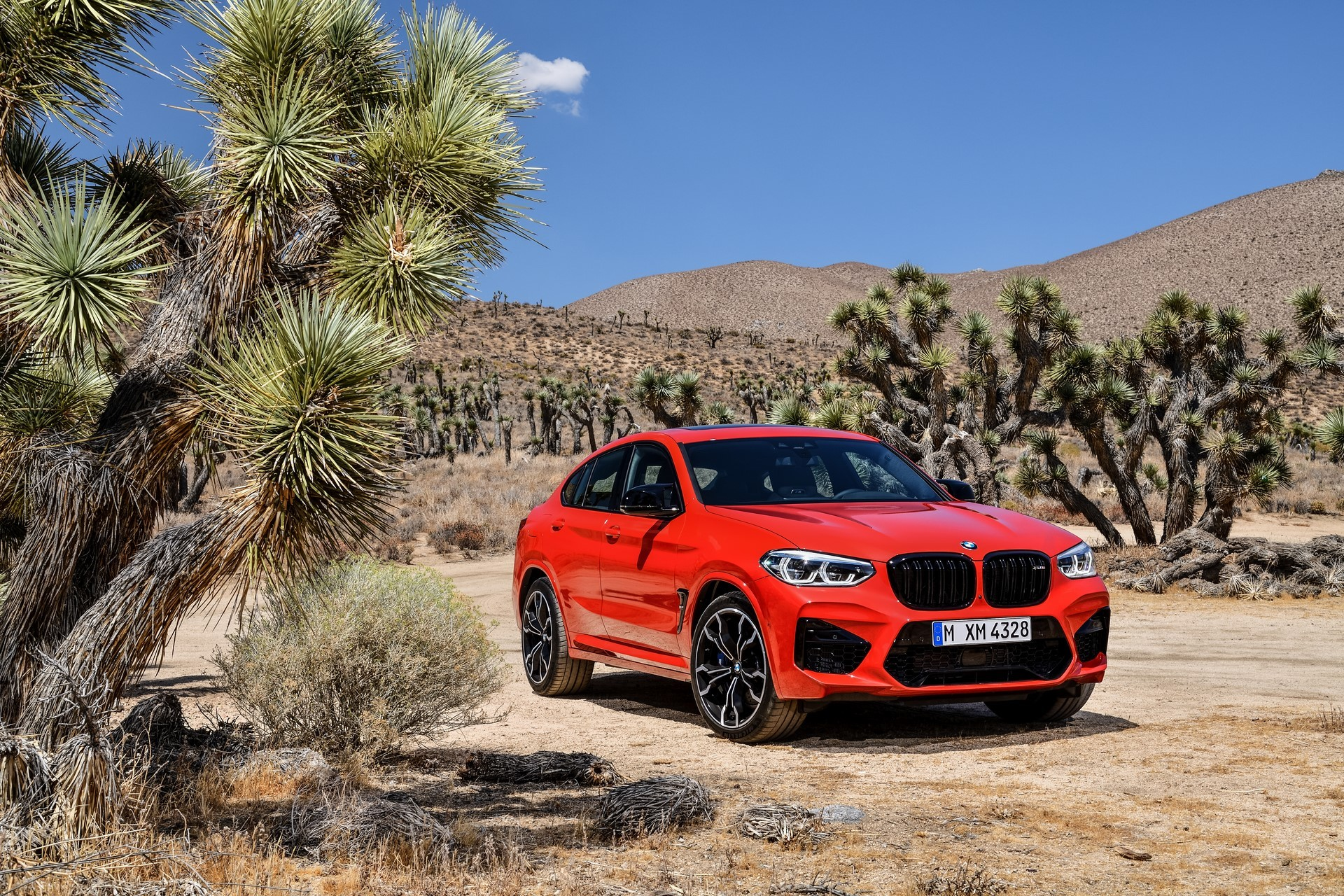 BMW X3 M and X4 M 2019 (88)