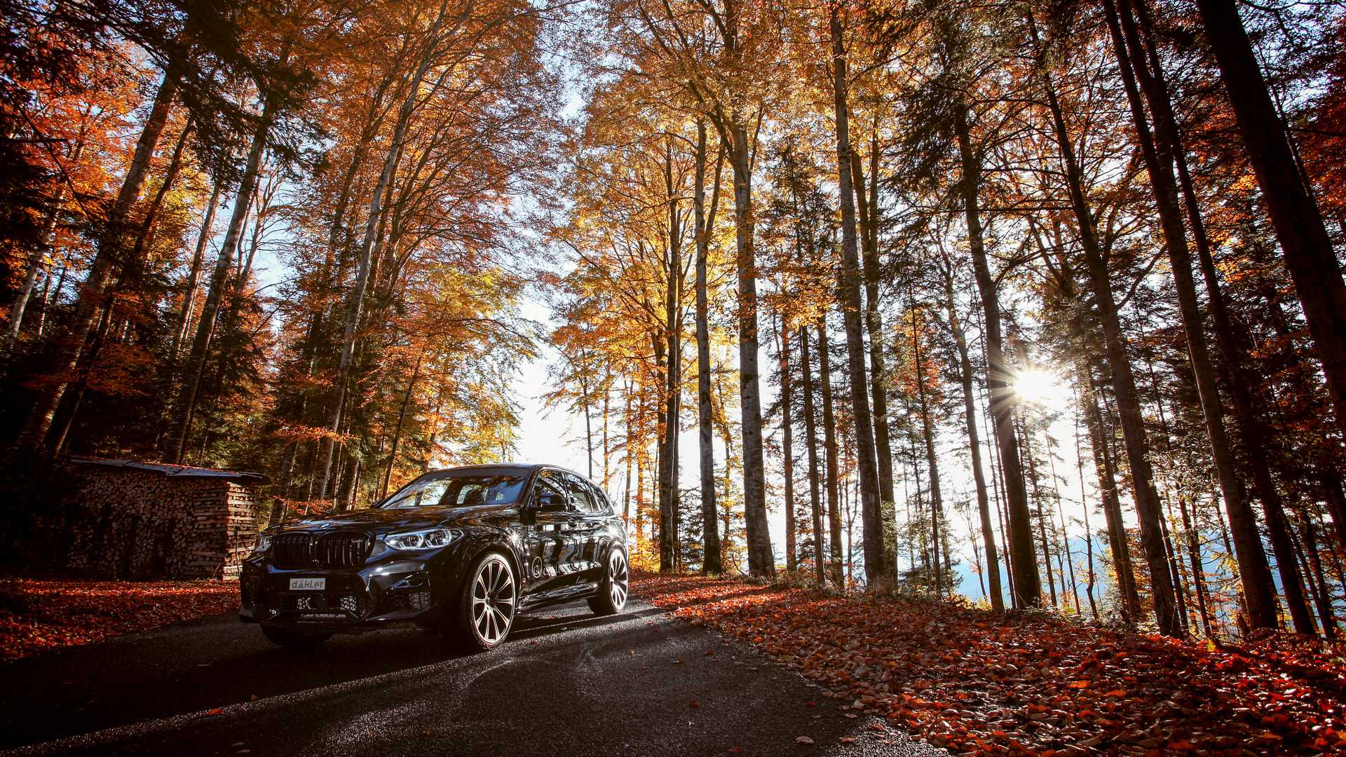BMW_X3_M_and_X4_M_by_Dahler_0028