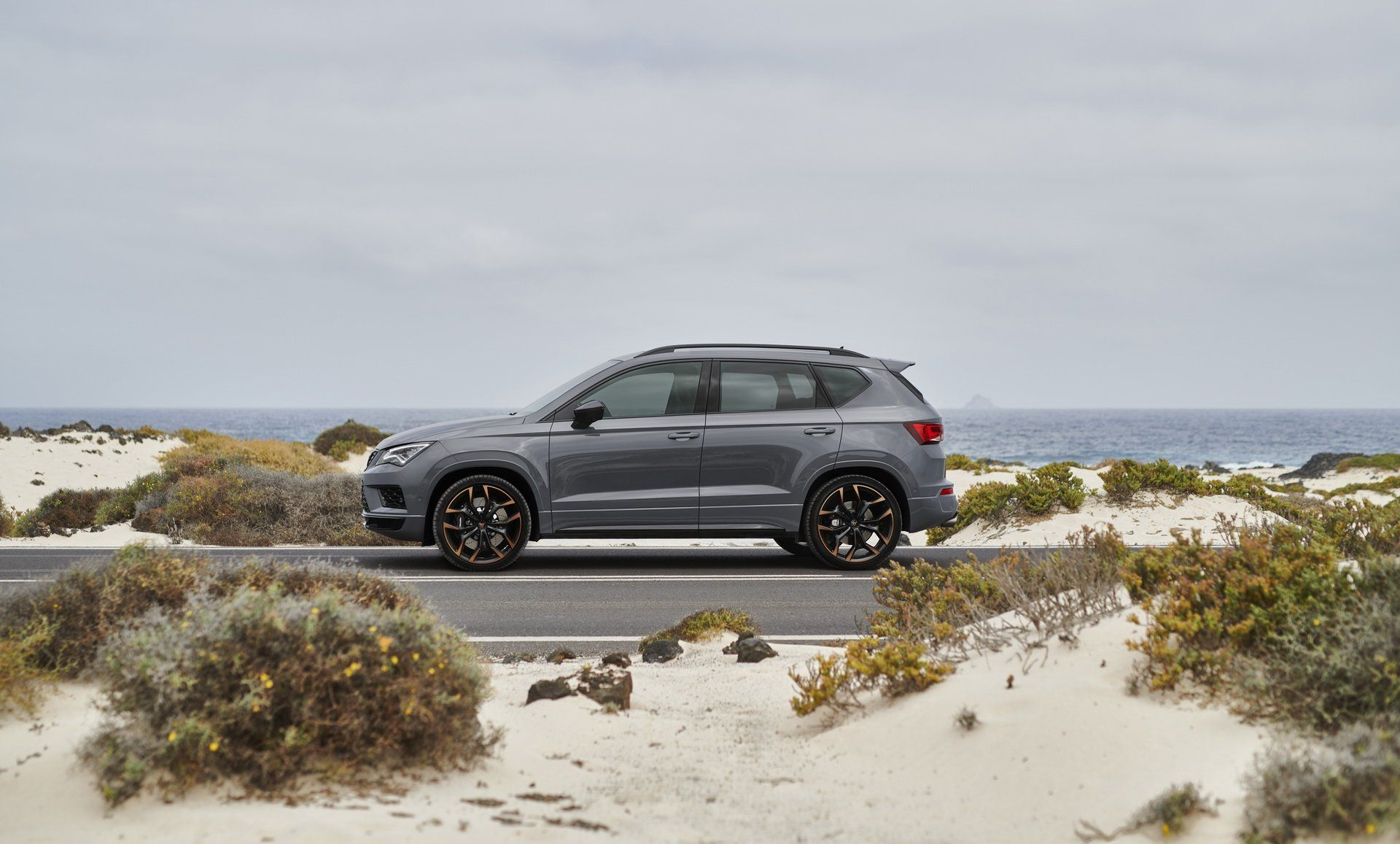 Cupra-Ateca-Limited-Edition-11