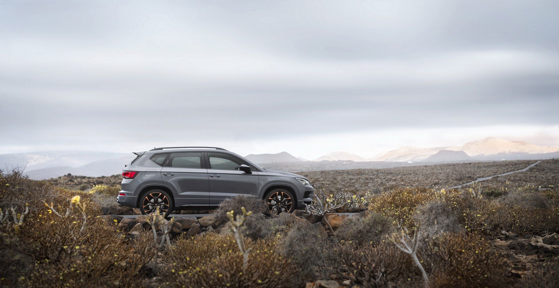 Cupra-Ateca-Limited-Edition-21