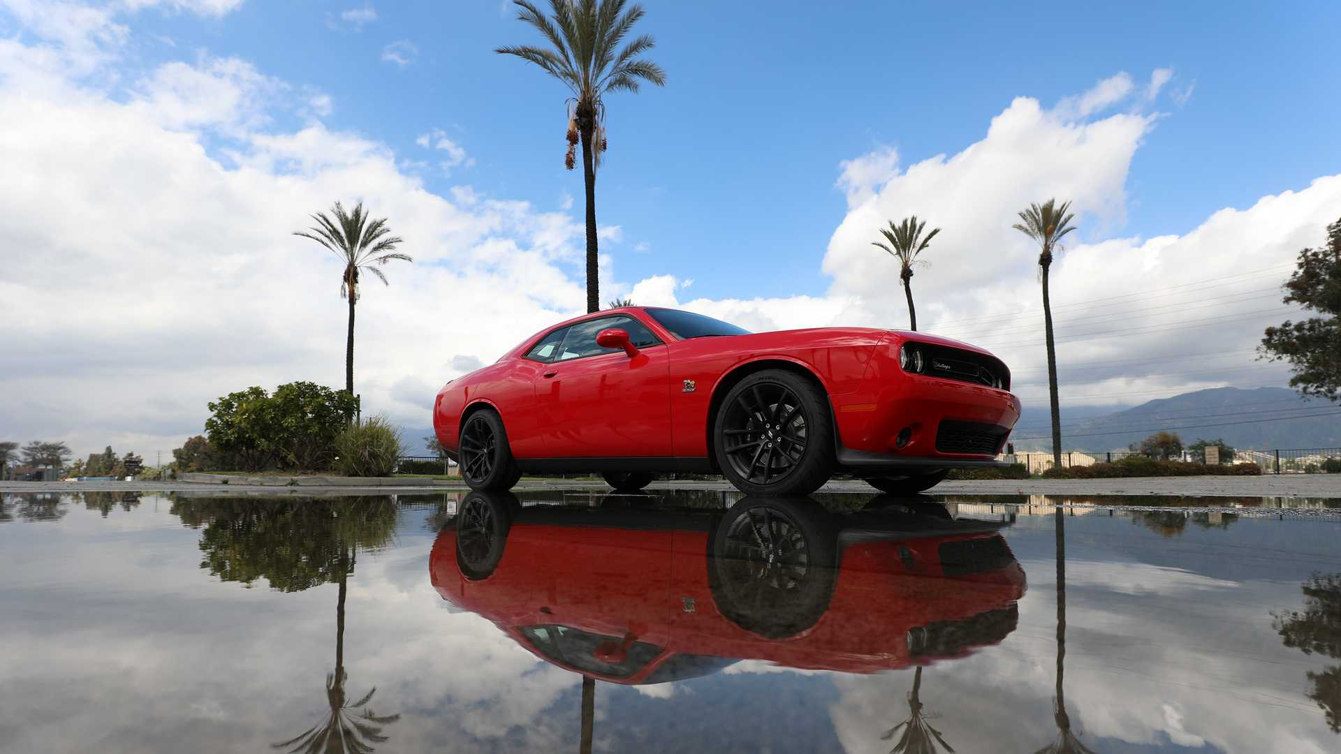 2019-dodge-challenger-r-t-scat-pack-1320-angry-bee-6