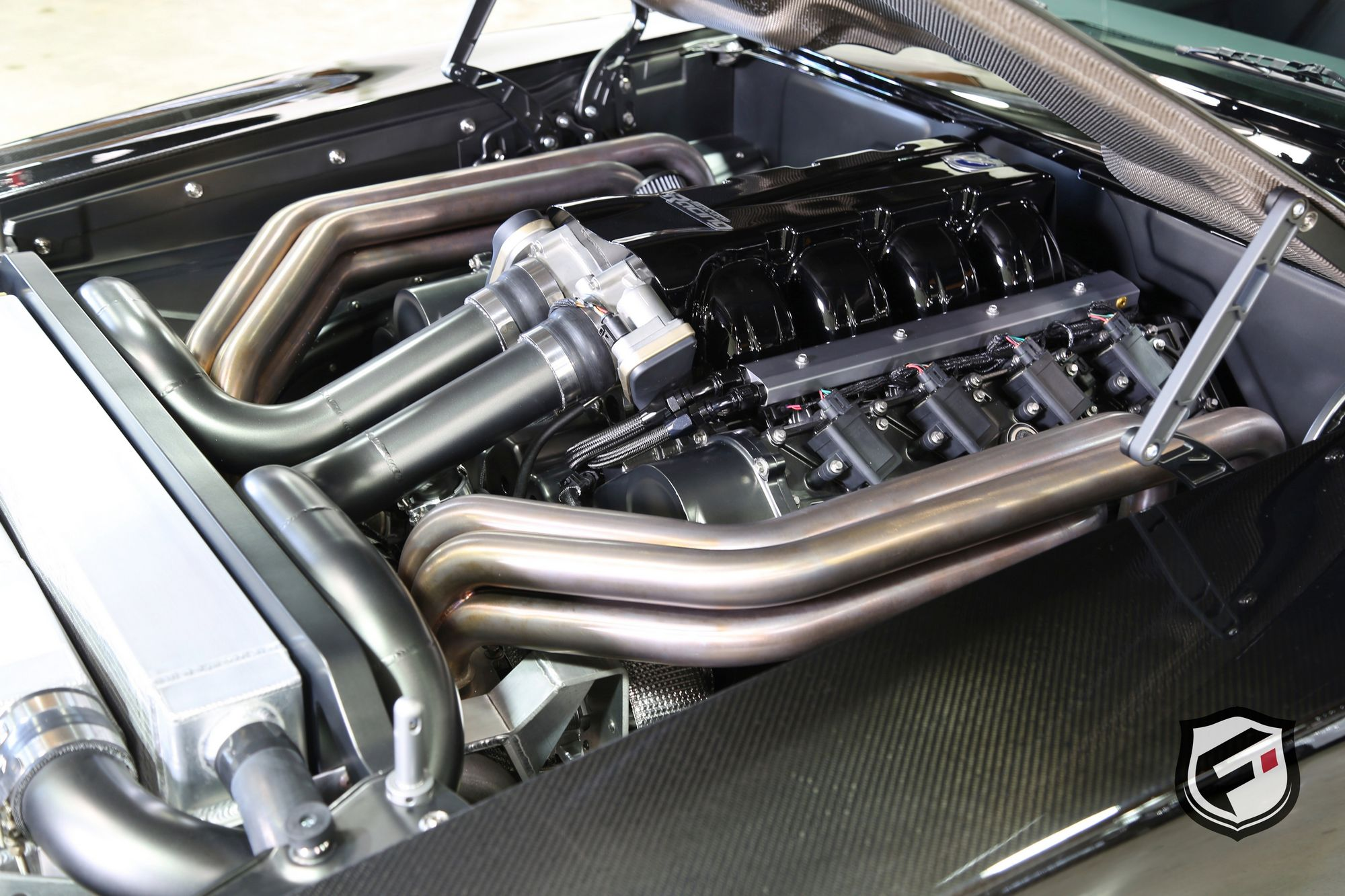 Dodge ChargerSpeedkoreTantrum (13)