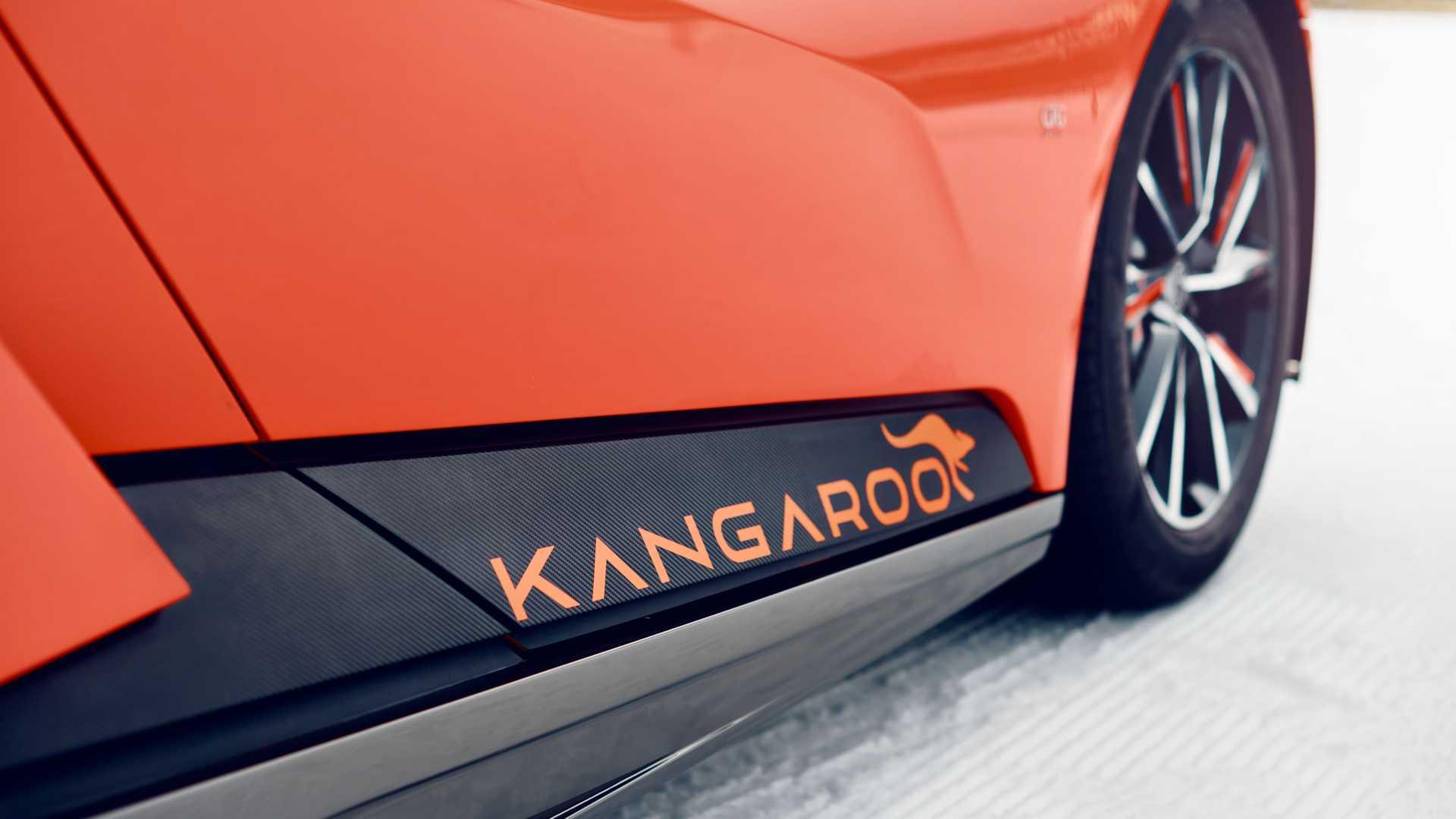 gfg-style-kangaroo (37)