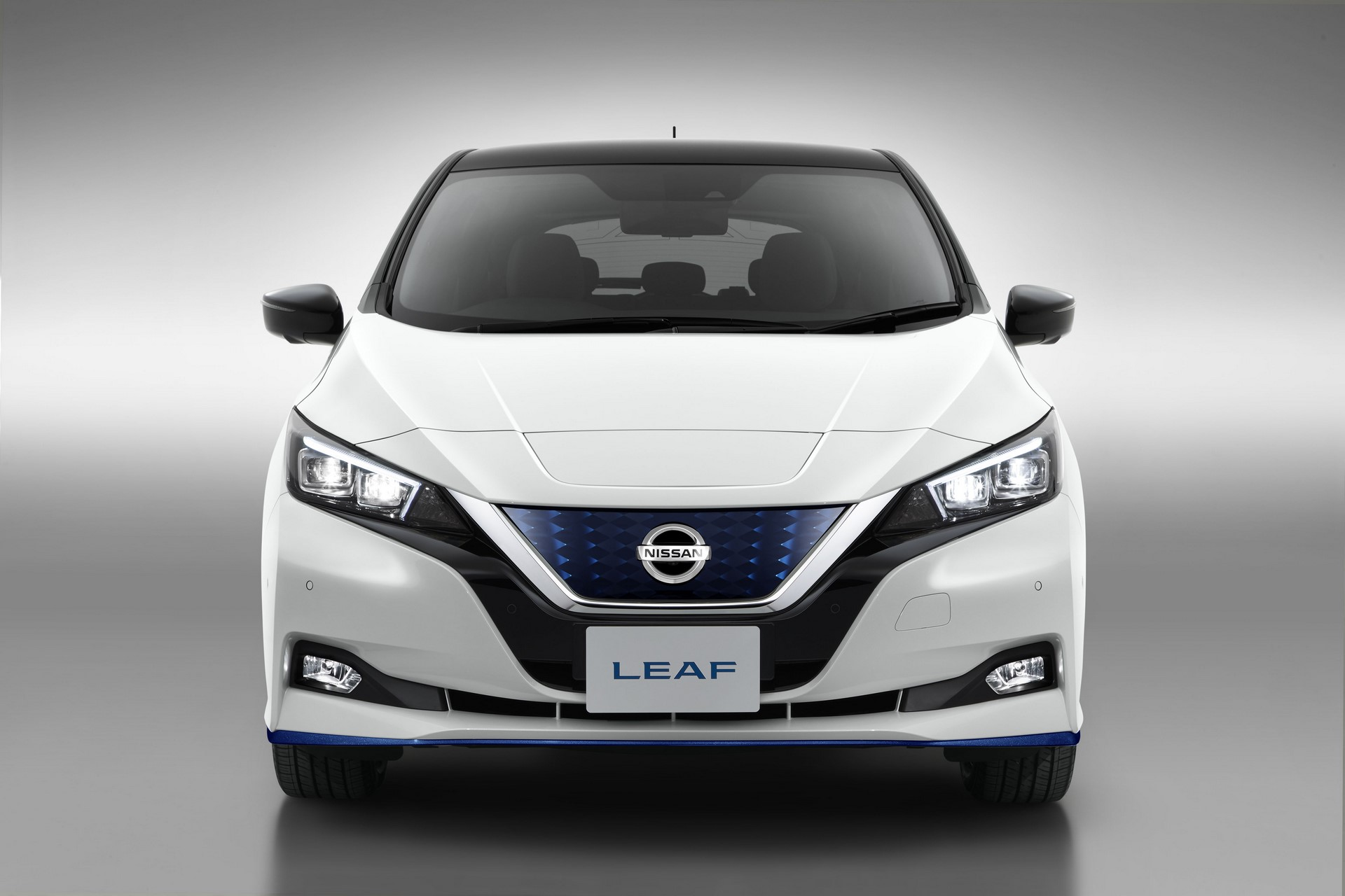 Nissan Leaf e-plus 2019 Europe (6)