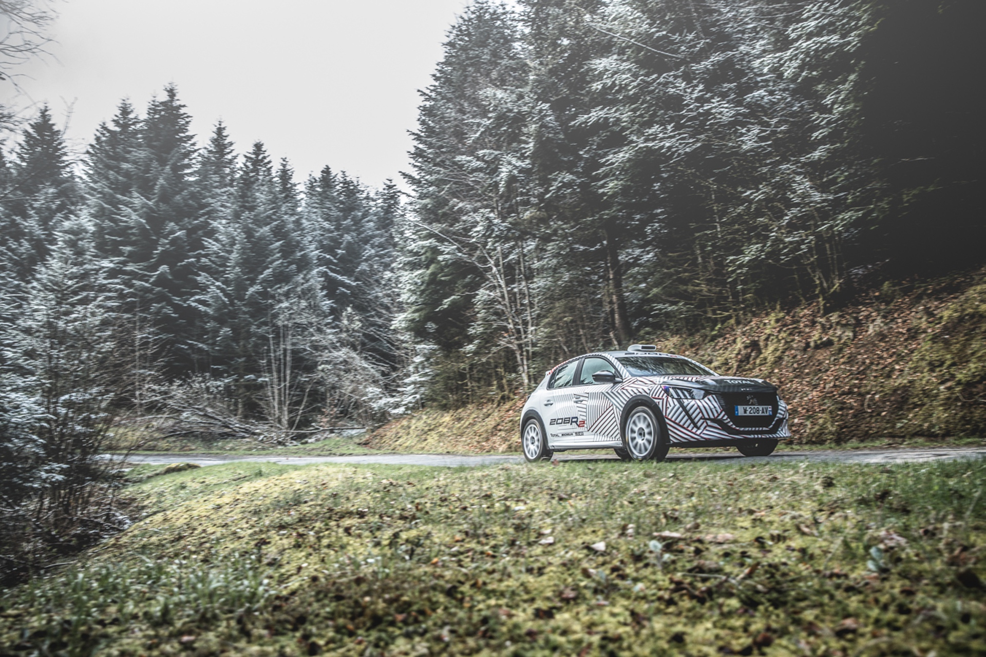Peugeot_208_Rally_4_0012