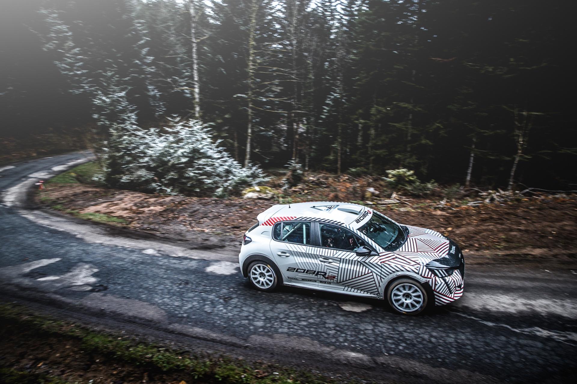 Peugeot_208_Rally_4_0014