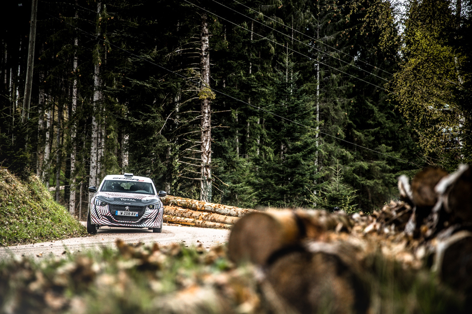 Peugeot_208_Rally_4_0015