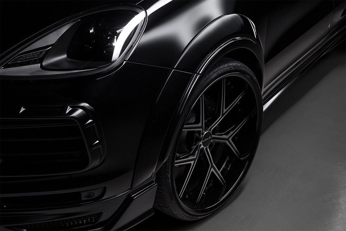Porsche Cayenne Black Bison Wald International (9)