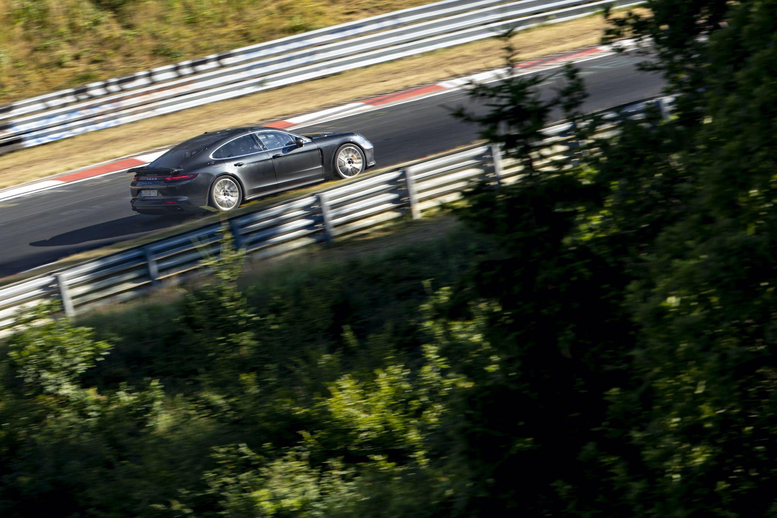 Porsche-Panamera-Lion-4