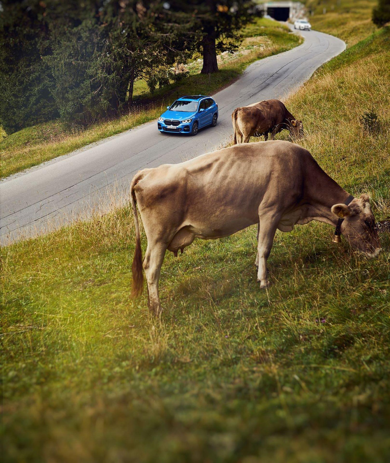 BMW-X2-xDrive25e-9