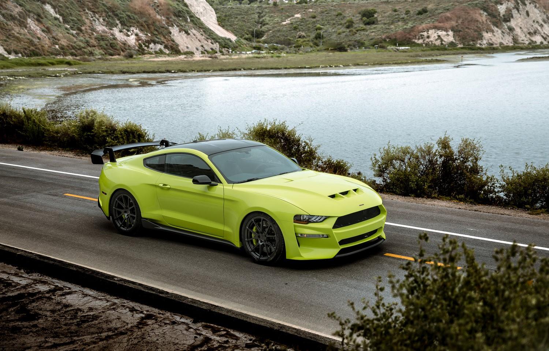 Ford-Mustang-GT-by-Revenge-13