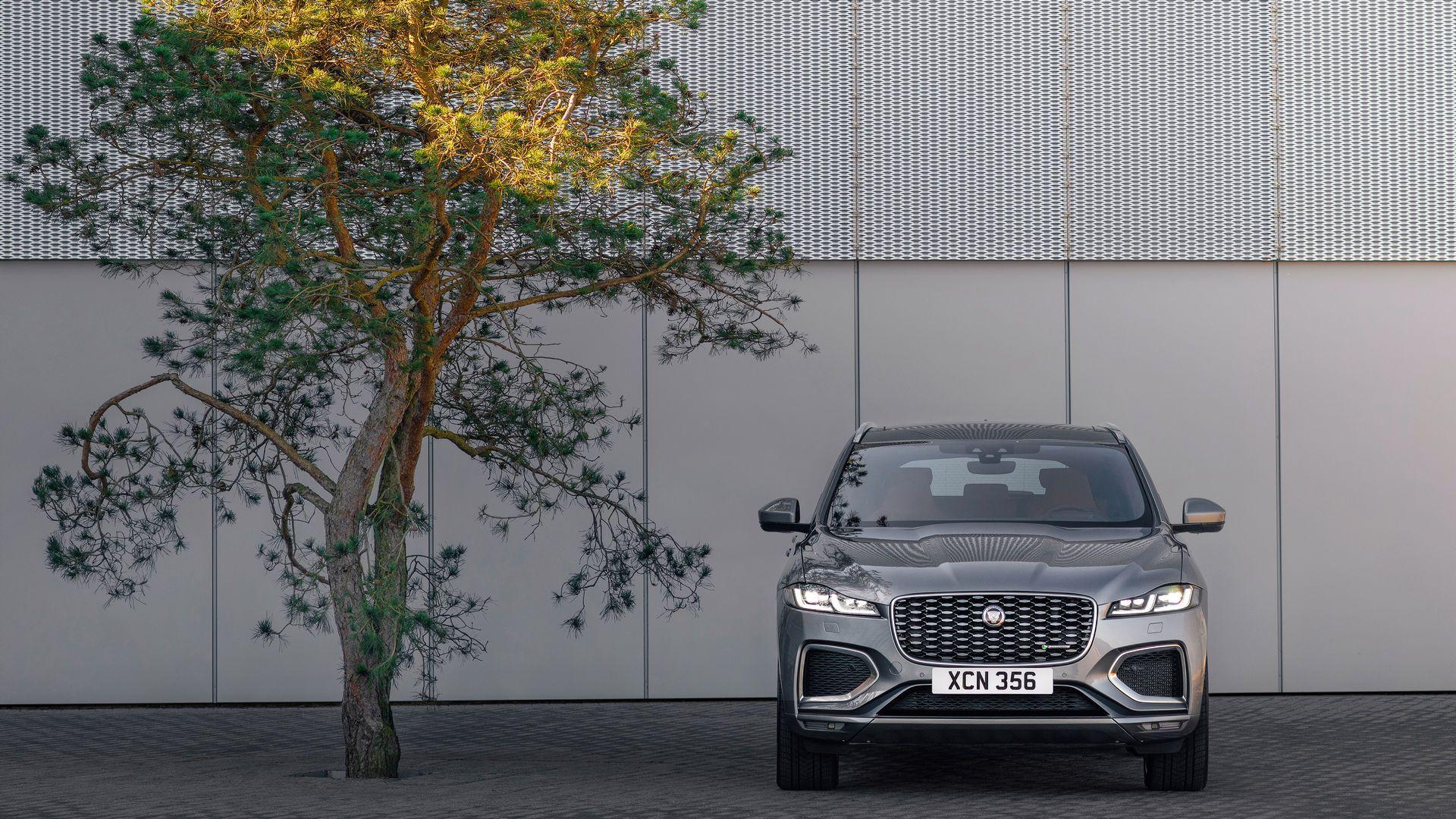 Jaguar-F-Pace-2021-9