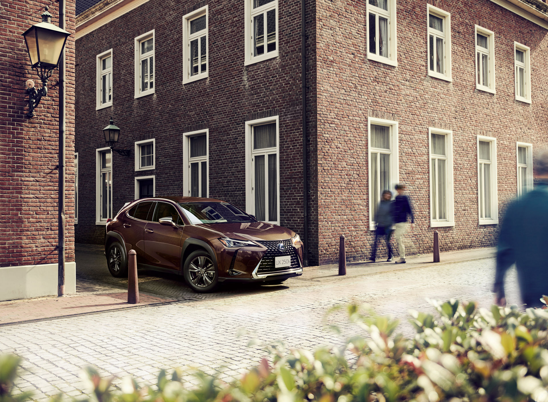 Lexus_UX250h_Brown-Edition_0000