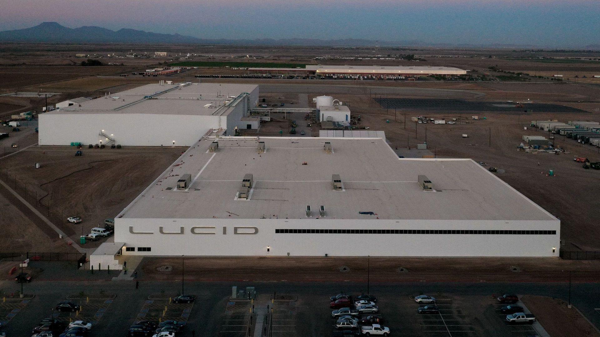 Lucid_Arizona_plant_0002