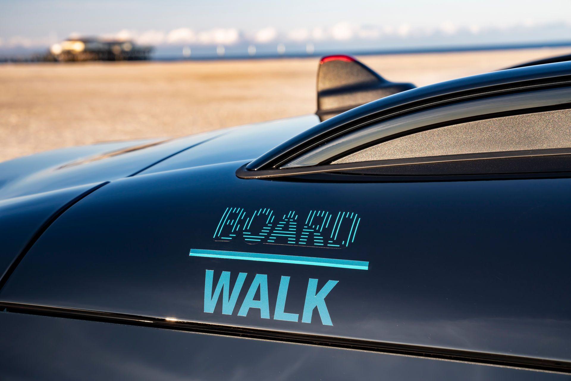 Mini-Countryman-Boardwalk-50