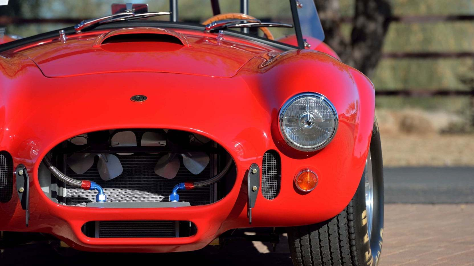 1965-Shelby-Cobra-2