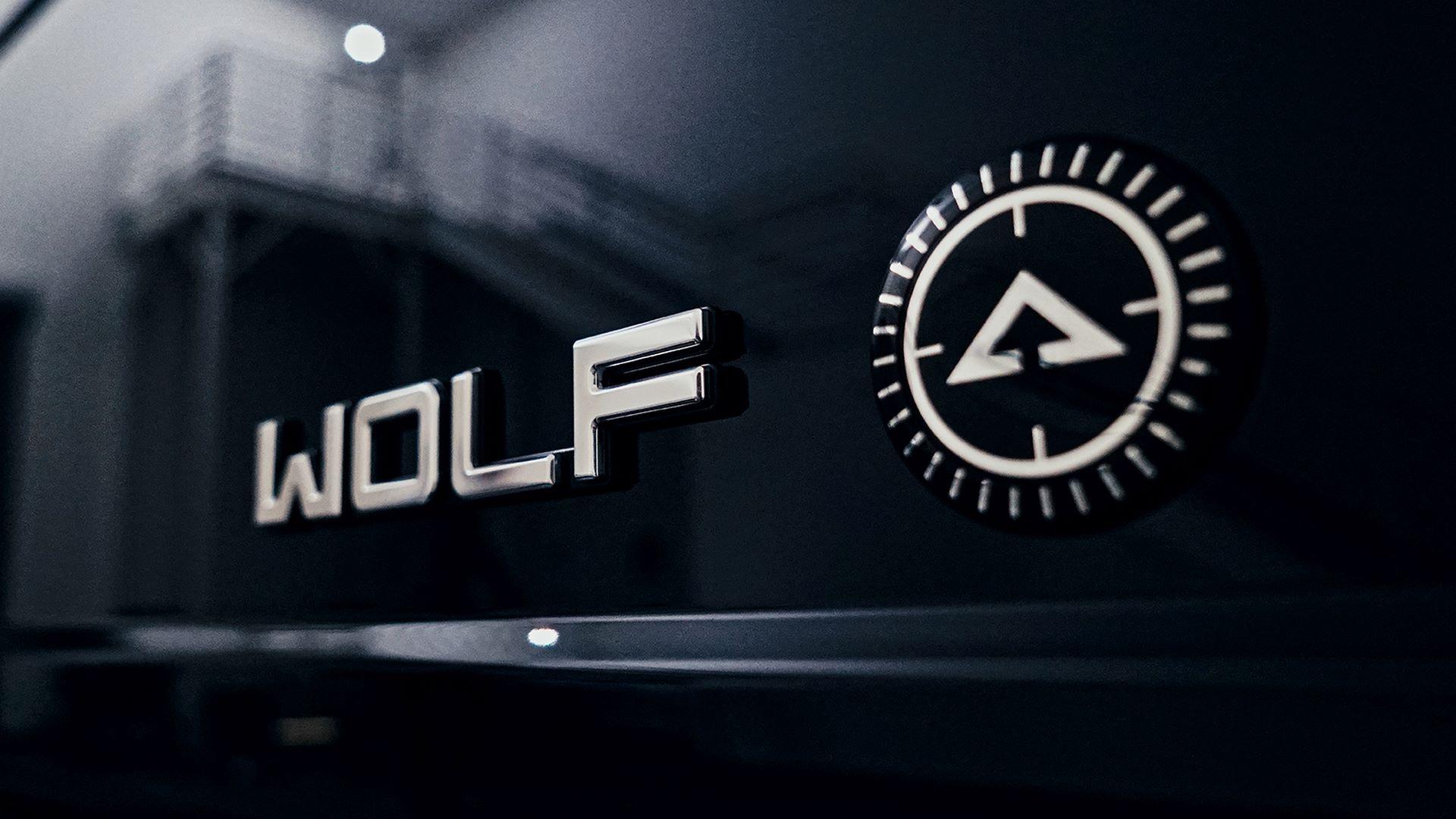 Alpha-Wolf-13