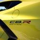 Chevrolet-Corvette-IMSA-GTLM-Championship-Edition-6