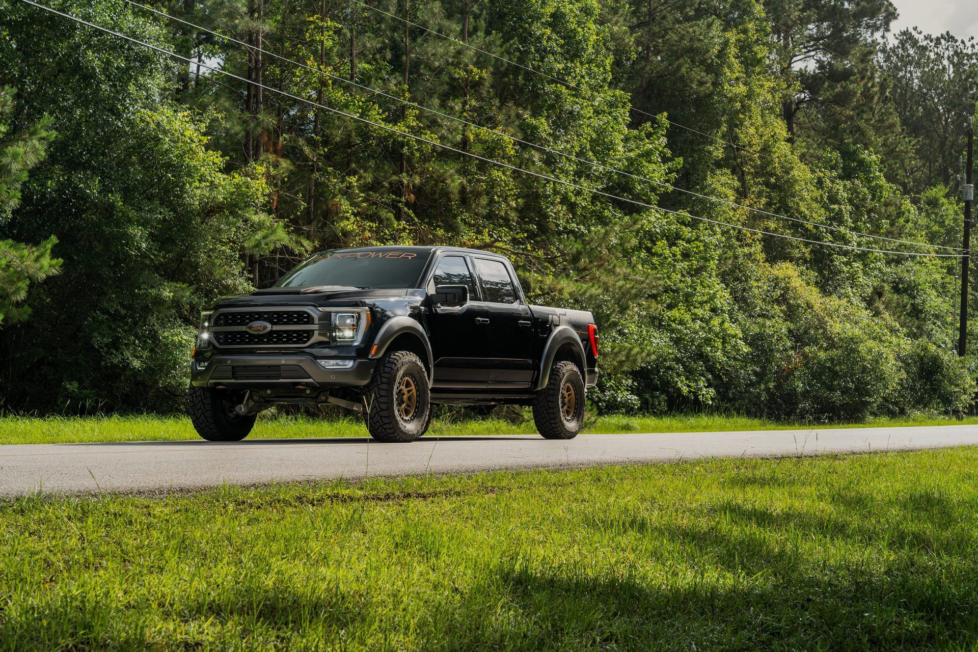 Ford_F-150_by_PaxPower-0002