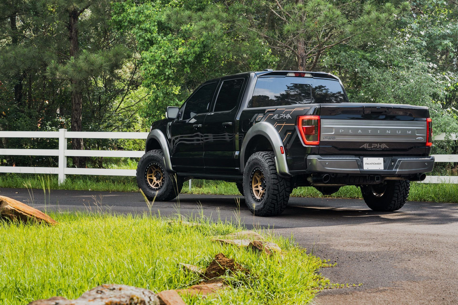 Ford_F-150_by_PaxPower-0003