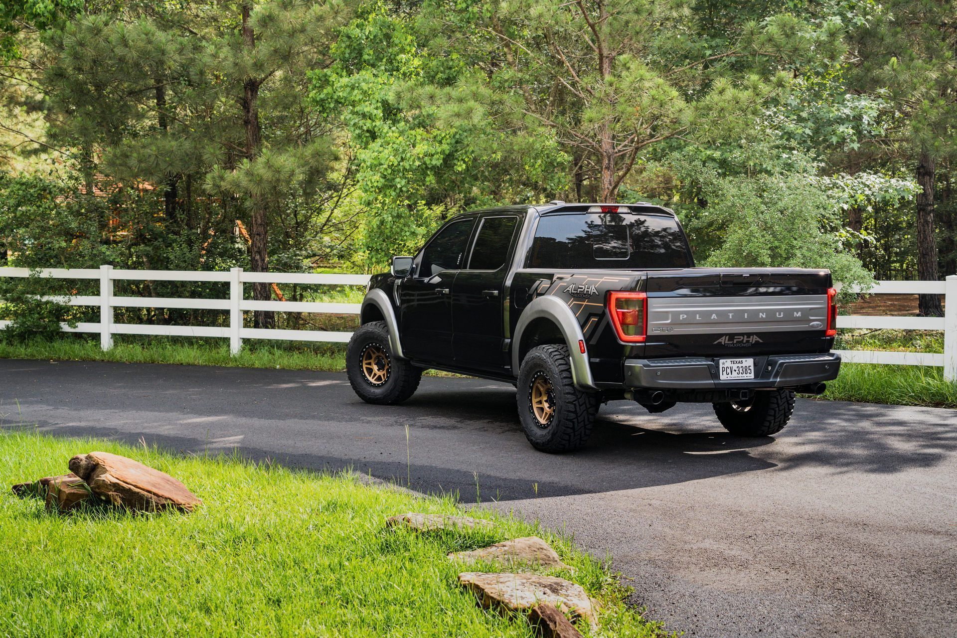 Ford_F-150_by_PaxPower-0004