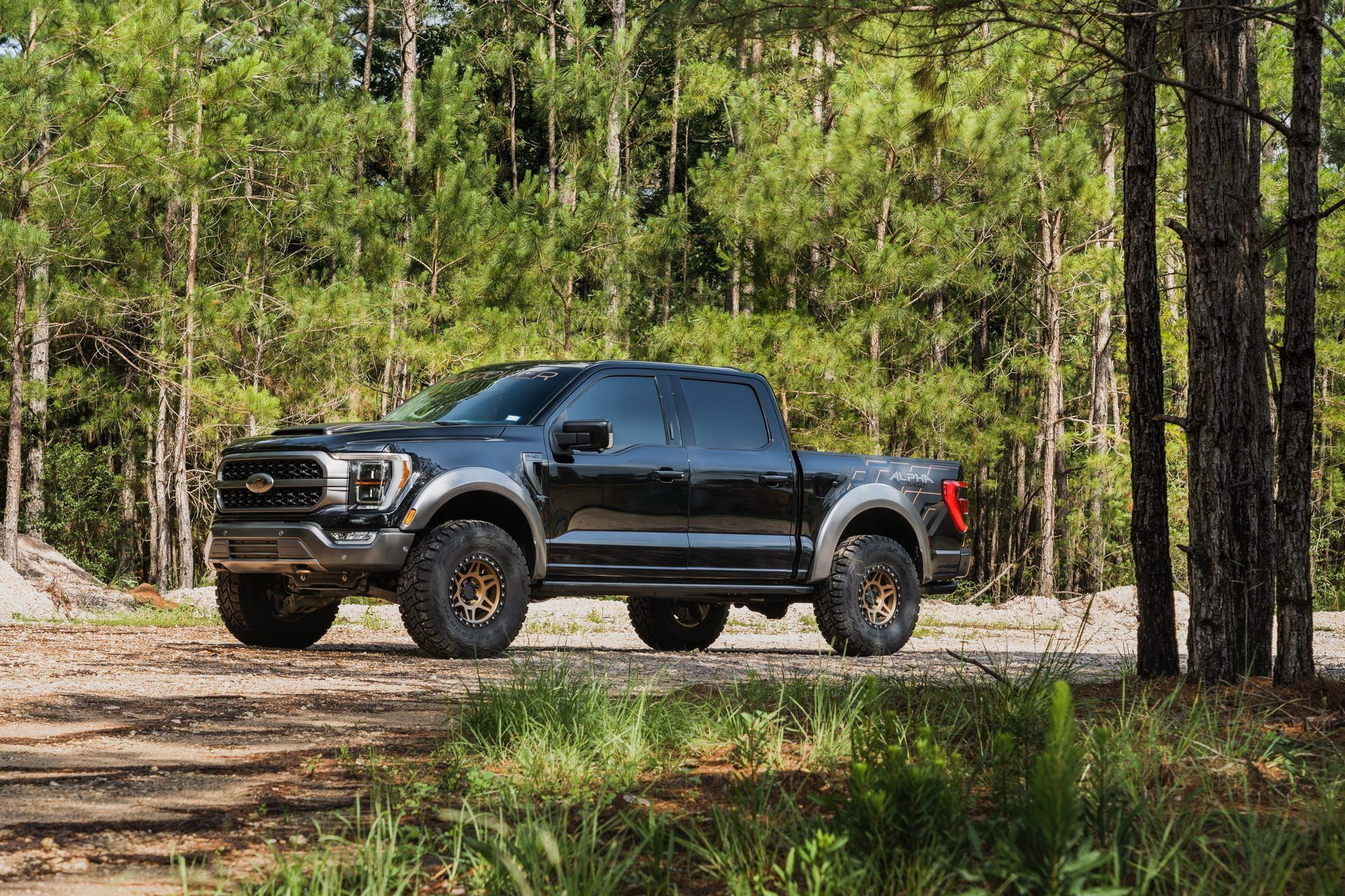 Ford_F-150_by_PaxPower-0005