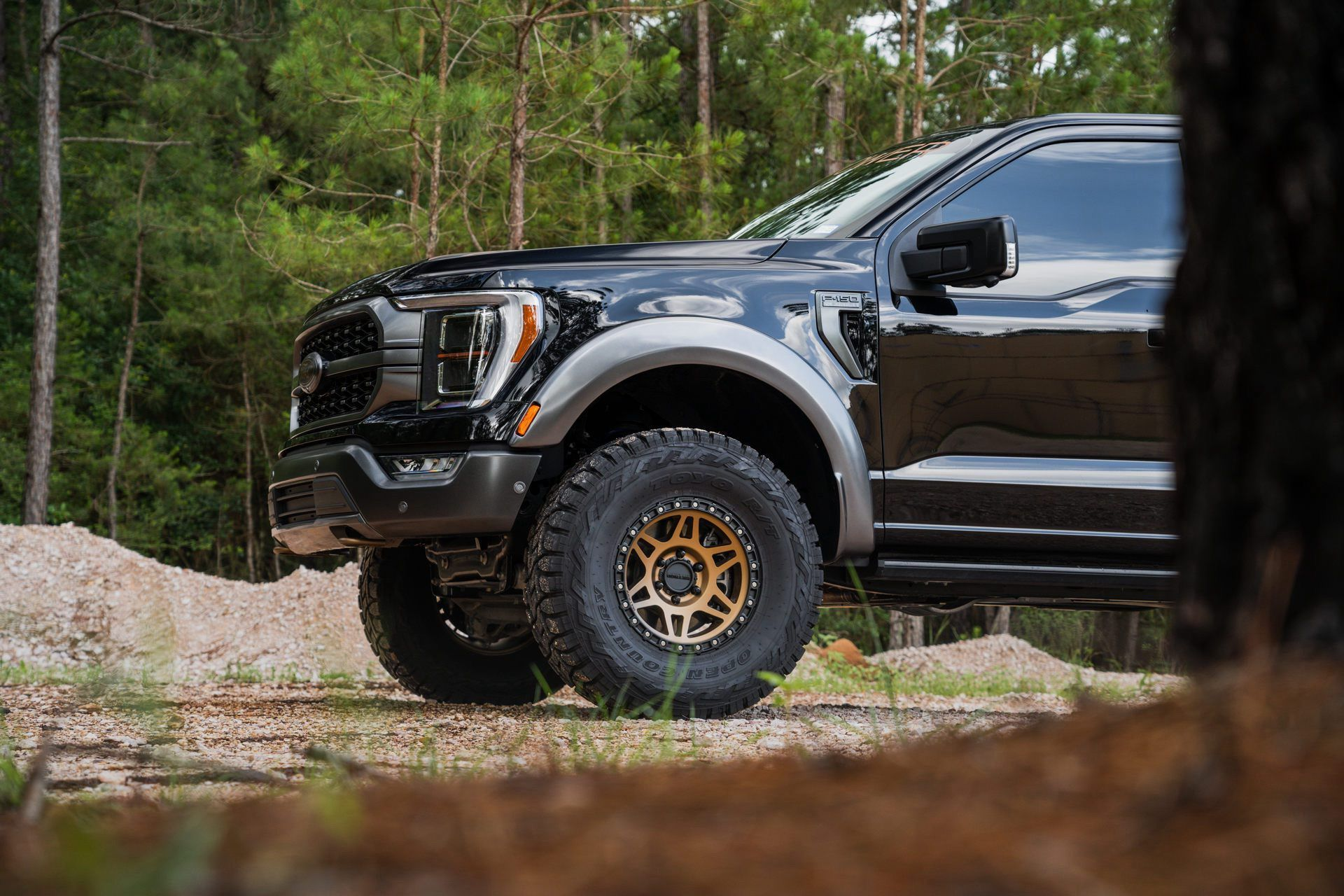 Ford_F-150_by_PaxPower-0006