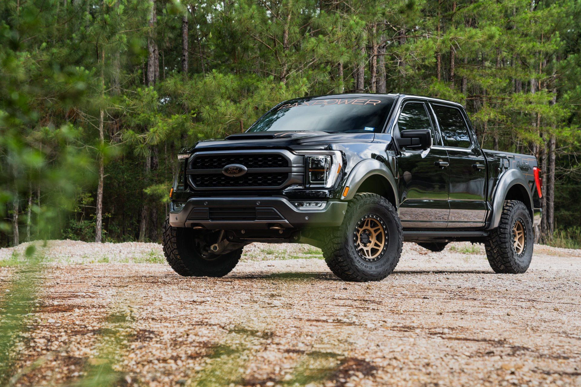 Ford_F-150_by_PaxPower-0008